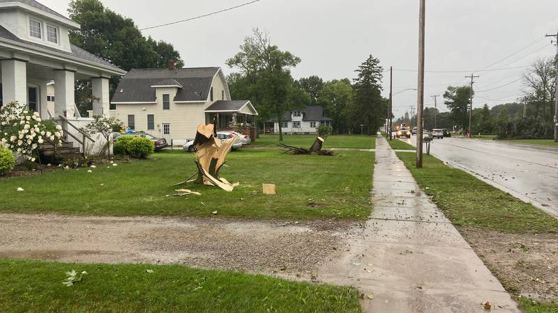 A tornado uprooted several large trees along E Pulaski St in Pulaski on Wednesday.