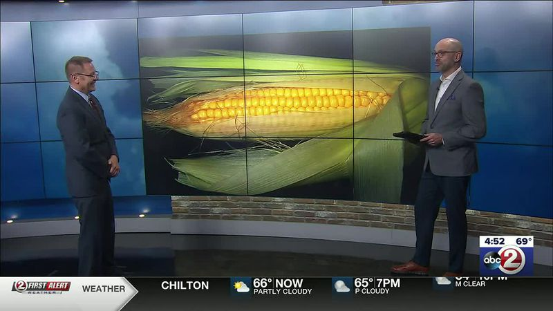 Brad Spakowitz and Chris Roth share their love for sweet corn