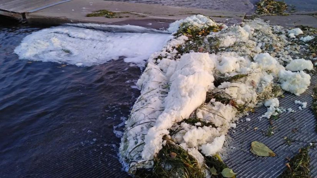 Foam present in Starkweather Creek in October shows elevated levels of PFAS.(Photo: WI DNR)