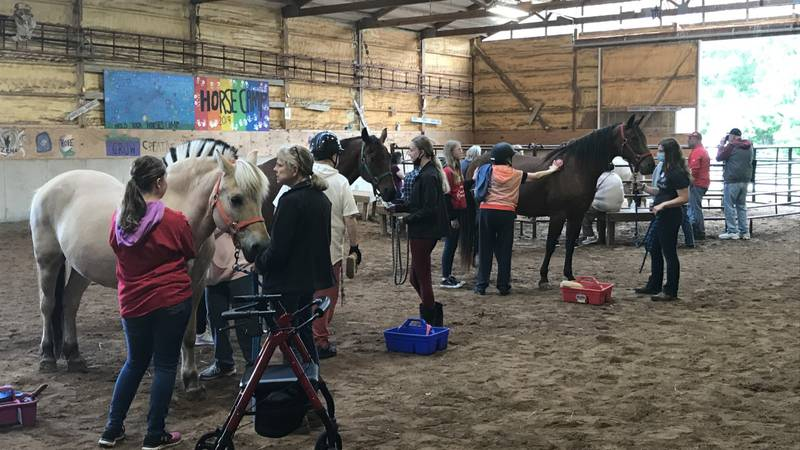 """Participants in the """"Riding in the Moment"""" program groom horses at Beaming Inc.."""