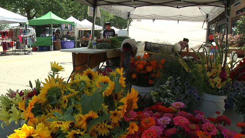 Vendors set up their tents for the Saturday Green Bay Farmers Market (WBAY photo)