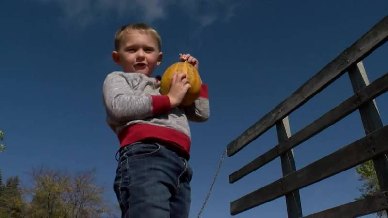 A 5-year-old in Minnesota is selling pumpkins to raise money for others.
