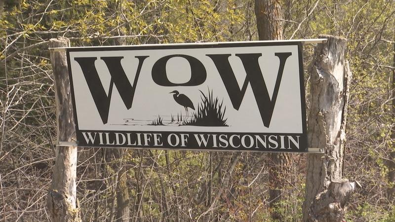 Wildlife of Wisconsin rehabilitation center in Manitowoc County.