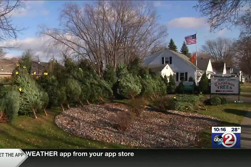 Knights of Columbus Christmas tree lot in De Pere