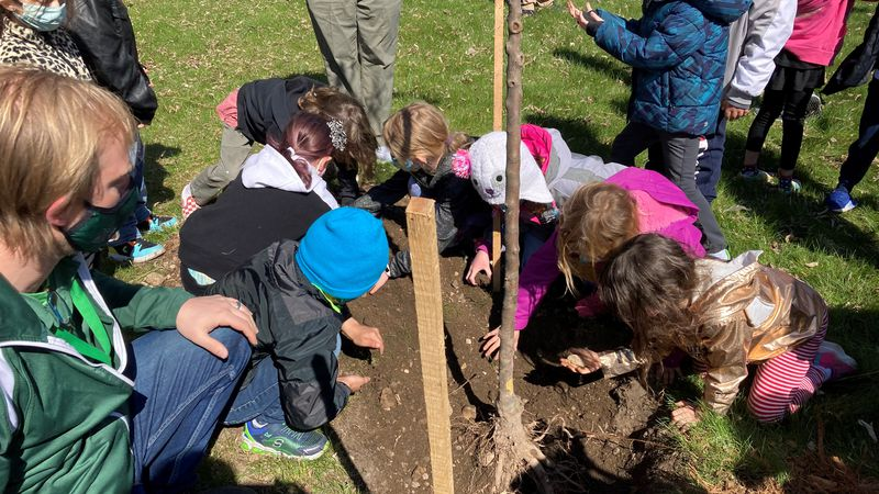 Aldo Leopold Elementary students in Green Bay plant trees on Earth Day
