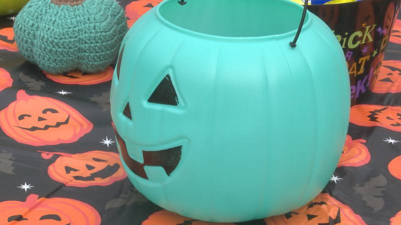 Teal Pumpkin indicates a child with a food allergy or a home handing out non-food treats