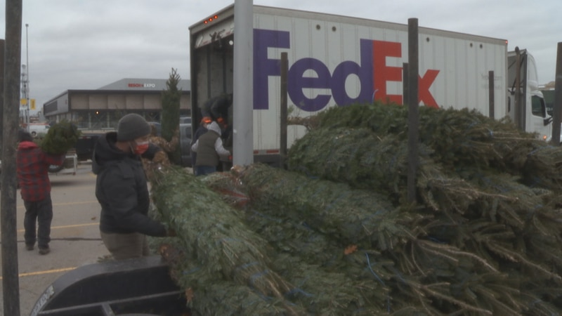 After a busy weekend of sales, local Christmas tree growers give back by donating to the Trees...