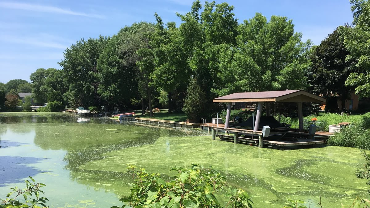 Algae bloom on Lake Winnebago (WBAY photo)