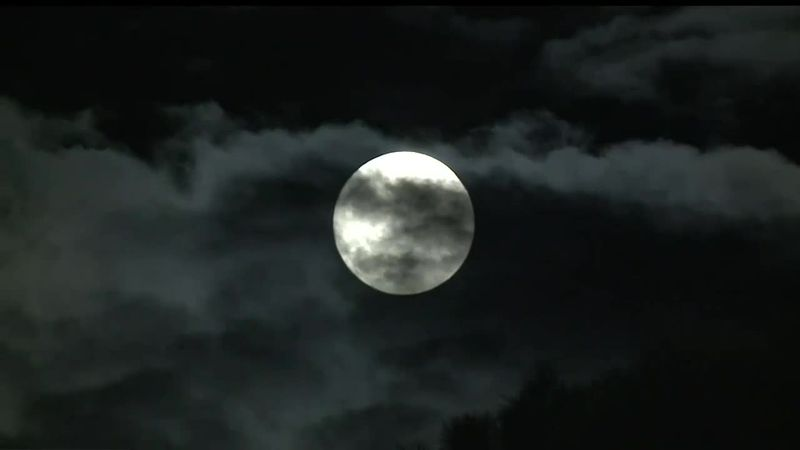 The full moon in January is called the Wolf Moon
